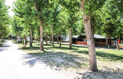Camping marina di roma